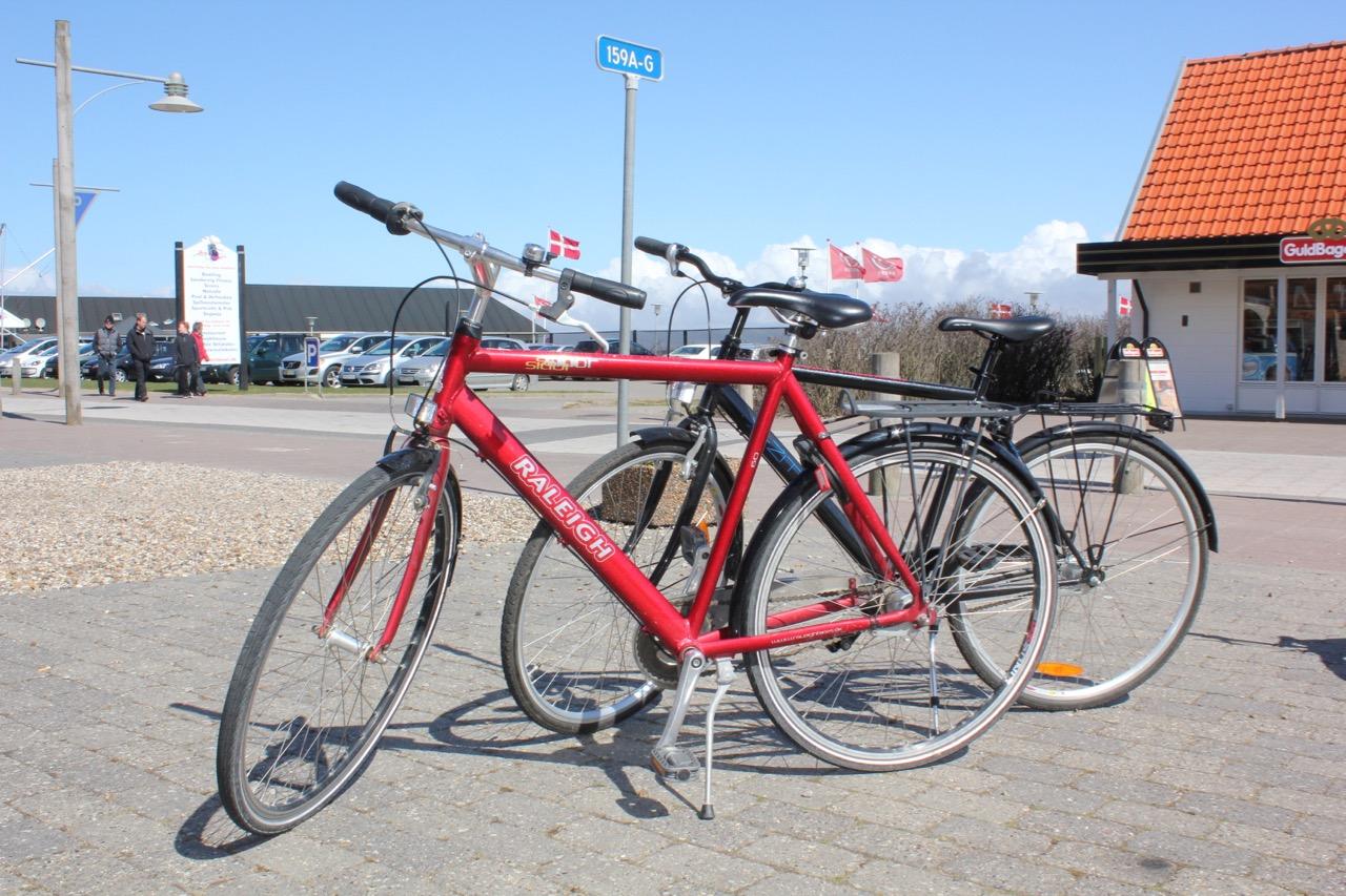 Søndervig Cykeludlejning - Herre. dame og børnecykler