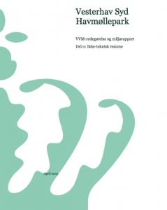 VVM-redegørelse Havvindmøllepark